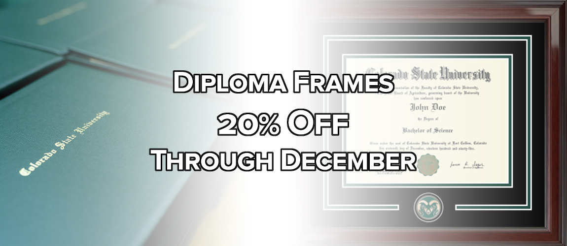 Diploma Frame 20% Off Sale