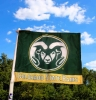 Cover Image for Green/Gold Colorado State University Rams Car Flag