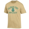 Cover Image for Green Pullover CSU Outline Hoodie by Under Armour