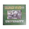 "Image for 4""X6"" Colorado State University Green & Gold Picture Frame"