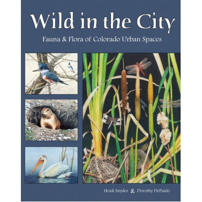 Image For Wild in the City by Heidi Snyder