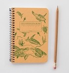 Image For Sea Turtles Decomposition Book Pocket Size