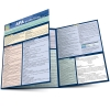 Image for APA Guidelines by Barcharts