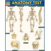 Image for Anatomy Test by Barcharts