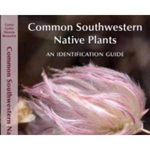 Common Southwest Native Plants By Jennifer Bousselot Csu Bookstore