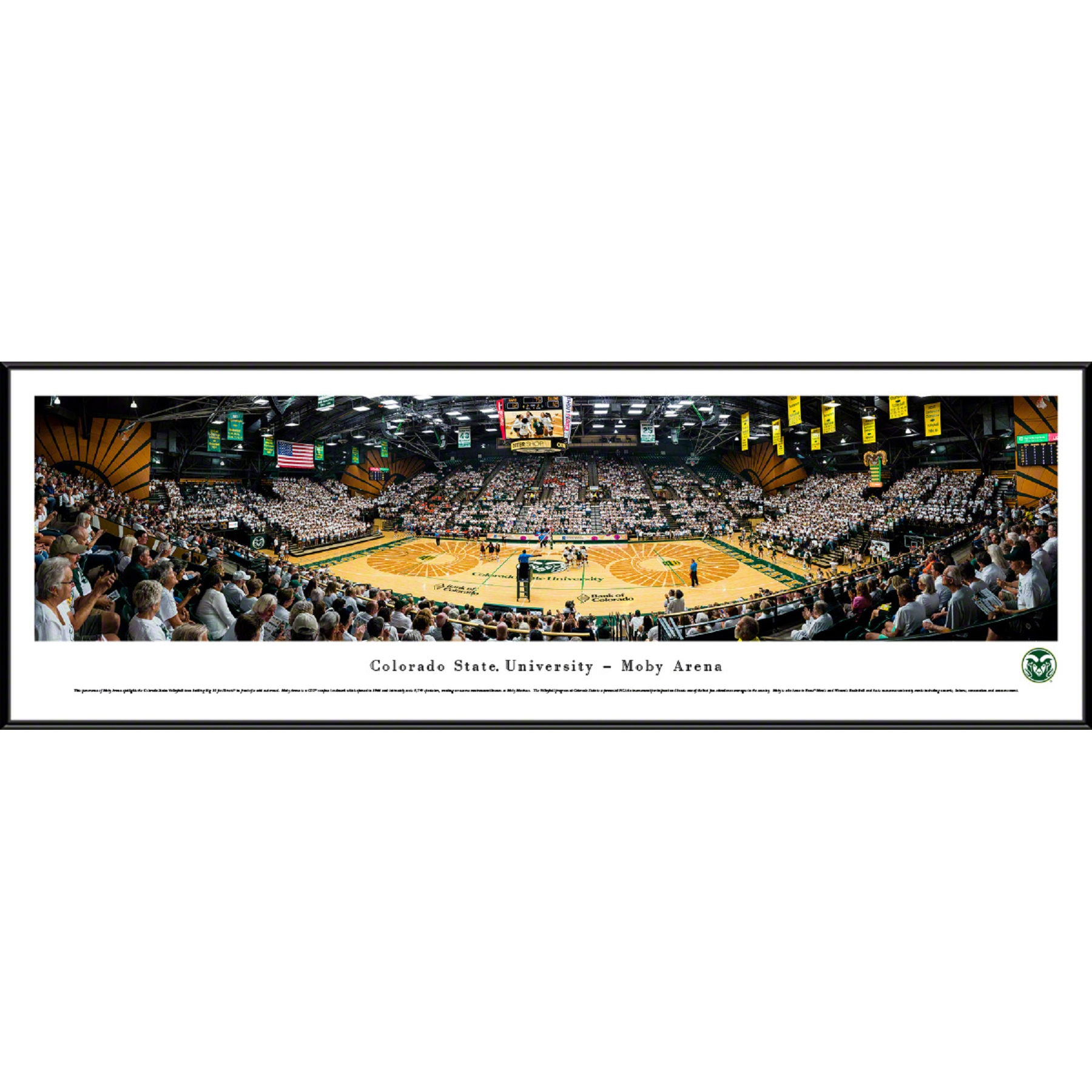 Image For Standard Frame Panoramic CSU Volleyball