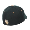 Cover Image for Forest Green Ram Horn Zephyr Hat- Small