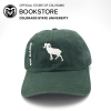 Image for AHEAD Unstructured Ram Silhouette Cap - Hunter Green