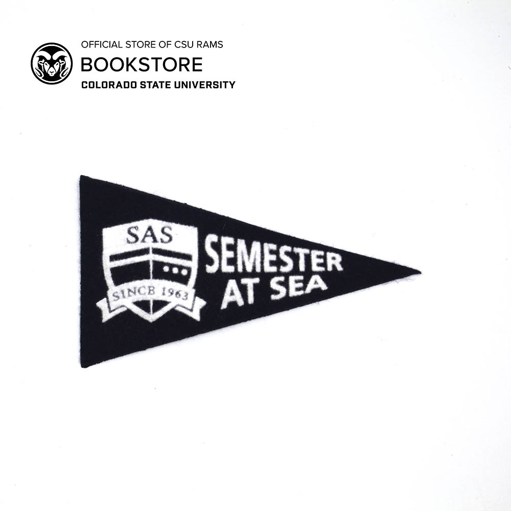Cover Image For Semester At Sea Mini Wool Pennant Magnet