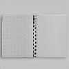 Cover Image for Oysters Dot Grid Decomposition Book