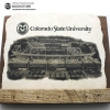 """Cover Image for 10"""" Colorado State Fight Song Limestone Stone and Stand"""
