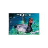 Image for Wildlife 2020 Wall Calendar