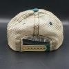 Cover Image for Green and Gold CSU Rams Women's Savvy hat by Zephyr