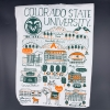 Cover Image for Colorado State University Large Julia Gash Canvas Banner