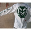Cover Image for CSU Rams White Long Sleeve Pocket Tee by League