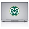 Cover Image for Green CSU Decal