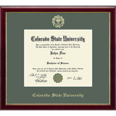 Cover Image For CSU Embossed Galleria Diploma Frame
